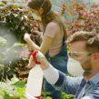 Produtos fitofarmacêuticos – Atualização em distribuição, comercialização e aplicação