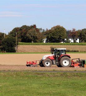 Correção/fertilização do solo