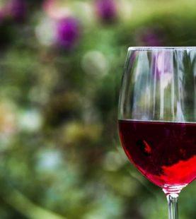 Vinificação de Vinhos Tintos