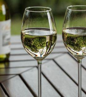 Vinificação de Vinhos Brancos